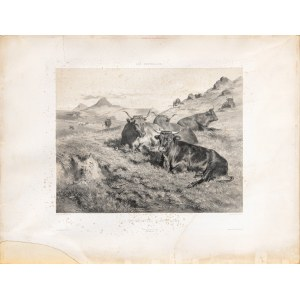 Bonheur Marie-Rosalie, Krowy z Owernii, 1856