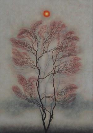 Dawid Zdobylak, Samotne drzewo