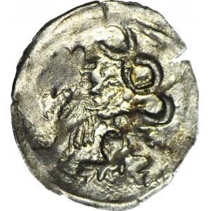 Śląsk, Jerzy z Podiebradu 1454-1462, Halerz bez daty, Lew/Orzeł, menniczy, R5