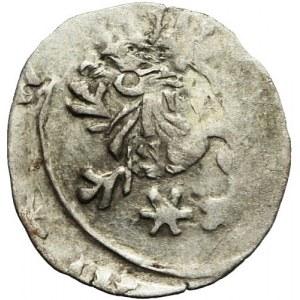 Śląsk, Zygmunt Luksemburski 1419–1437, Halerz bez daty, Wrocław, destrukt, ciekawy