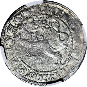 RR-, Wacław II Czeski 1300-1306, Grosz praski