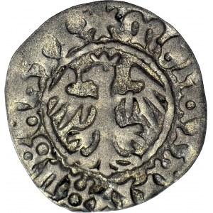 Jan Olbracht 1492-1501, Półgrosz bez daty Kraków