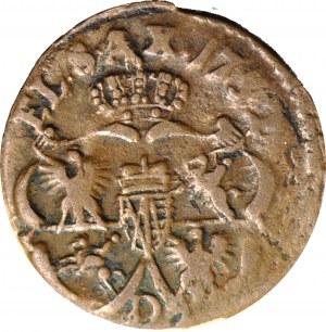 R-, August III Sas, Szeląg 1752 D, rzadki