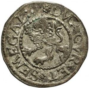 R-, Kurlandia, Gotthard Kettler, szeląg 1575, Mitawa, menniczy