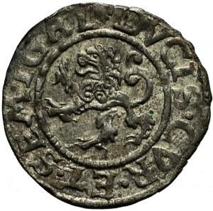 R-, Kurlandia, Gotthard Kettler, szeląg 1576, Mitawa, menniczy