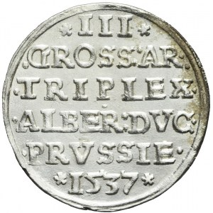 Lenne Prusy Książęce, Albrecht Hohenzollern, Trojak 1537, Królewiec, menniczy