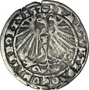 RR-, Śląsk, Księstwo Cieszyńskie, Fryderyk Kazimierz, Grosz 1570, Bielsko
