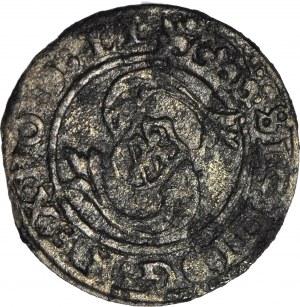Zygmunt III Waza, Szeląg 1598, Ryga