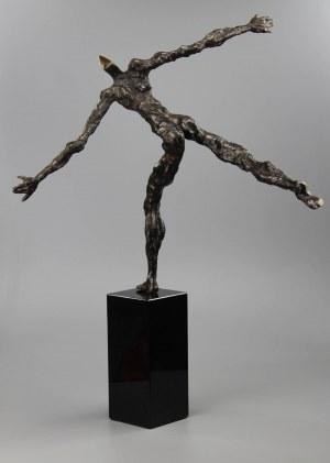 Tomasz Koclęga (ur. 1968), Cogito Volanti, 2020