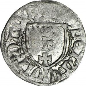 Kazimierz IV Jagiellończyk, Szeląg bez daty, Gdańsk