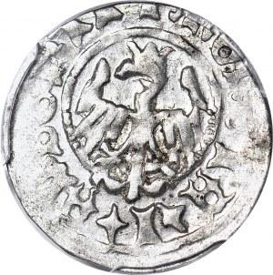 Jan Olbracht 1492-1501, Półgrosz bez daty Kraków, piękny