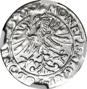 Zygmunt I Stary, Grosz 1545, Kraków, menniczy