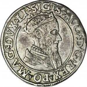 R-, Zygmunt II August, Czworak 1568, Wilno