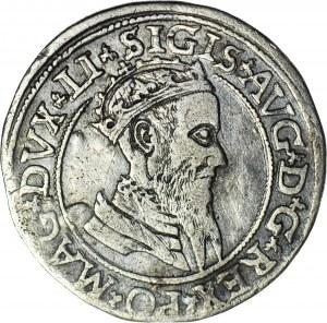 R-, Zygmunt II August, Czworak 1568, Wilno, data oddalona