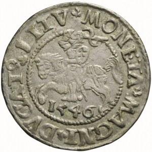 R-, Zygmunt II August, Półgrosz 1546, Wilno, LITV/L+, bardzo ładny
