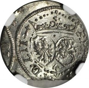 Zygmunt III Waza, Szeląg 1617, Wilno, menniczy