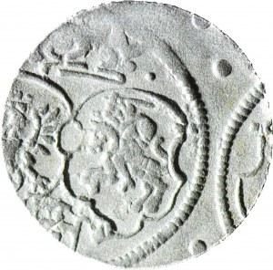 RR-, Zygmunt III Waza, Denar 16Z1, Kraków, R4