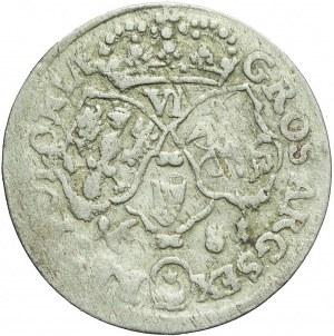 Jan III Sobieski, Szóstak 1681, Bydgoszcz, kokarda