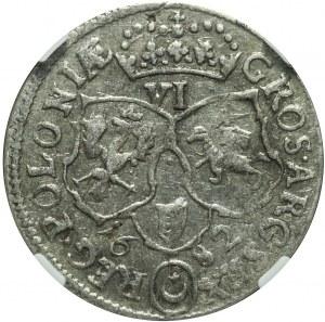 Jan III Sobieski, Szóstak 1682, Bydgoszcz, ładny