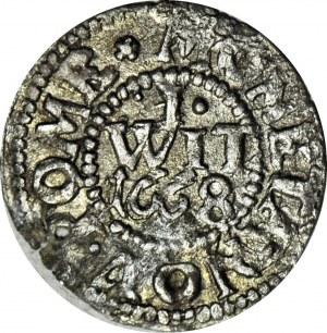 RRR-, Pomorze, Karol XI, Wit 1668, Szczecin, R8