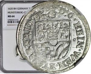 Śląsk, Henryk Wacław i Karol Fryderyk, 3 krajcary 1620 BH, Oleśnica