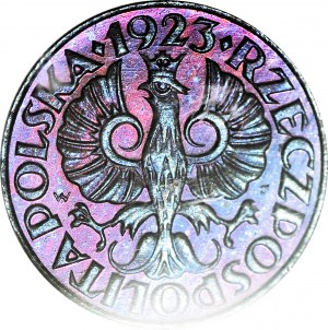 RRR-, PRÓBA, 1 grosz 1923, Kings Norton, LUSTRZANKA