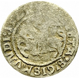 Sigismund I the Old, Halfgroat 1521, Vilnius