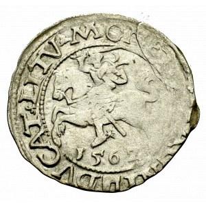 Sigismund II Augustus, Halfgroat 1562, Vilnius
