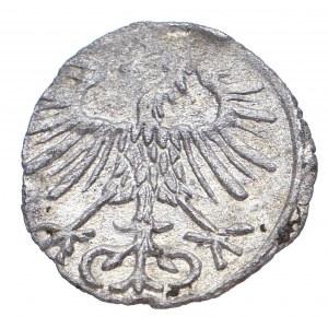 Zygmunt II August, Denar 1556, Wilno