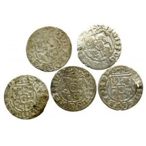 Zygmunt III Waza, Zestaw półtoraków (3 egz) + Gustaw Adolf (2 egz)