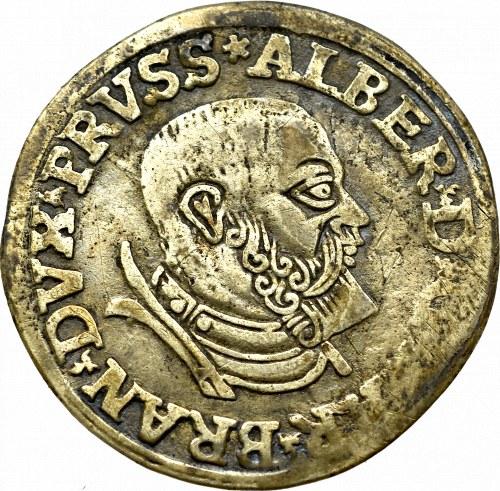 Prusy Książęce, Albert Hohenzollern, trojak 1535, Królewiec - PRVSSIE