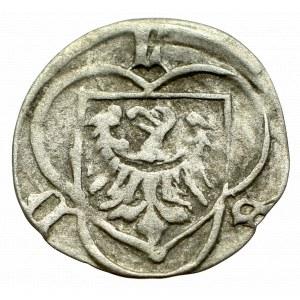 Śląsk, Ludwik II, Halerz Brzeg