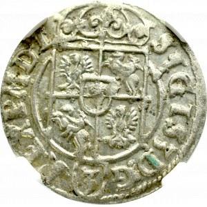 Zygmunt III Waza, Półtorak 1623, Bydgoszcz - NGC AU58