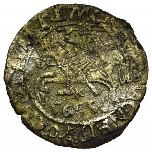 Zygmunt II August, Fałszerstwo z epoki półgrosza