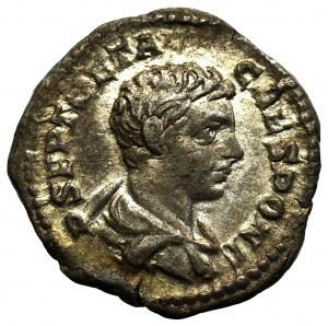 Cesarstwo Rzymskie, Geta, Denar