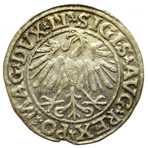 Zygmunt II August, Półgrosz 1547, Wilno - LI/LITVA
