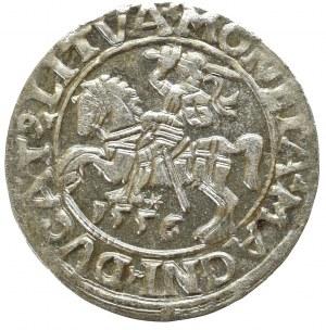 Zygmunt II August, Półgrosz 1556, Wilno - LI/LITVA
