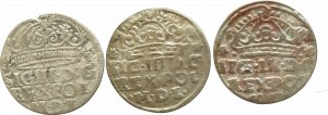 Zygmunt III Waza, zestaw groszy
