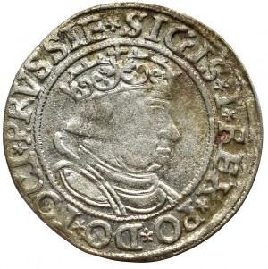 Zygmunt I Stary, Grosz dla ziem pruskich 1534, Toruń - PRVSSIE/PRVSSIE