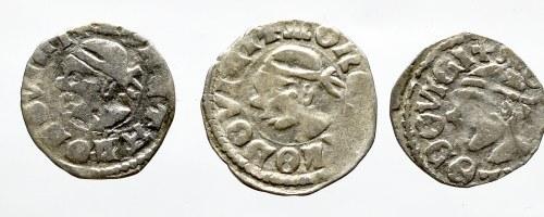 Ludwik Wegierski, Set of denarius
