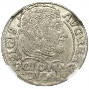 Sigismund II Augustus, Grossus 1548, Vilnius - NGC MS63