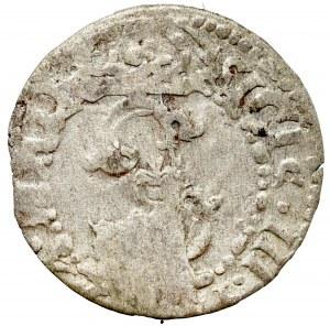 Zygmunt III Waza, Szeląg 1609, Ryga - rzadki