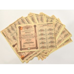 II RP, Tow. Zakładów Zawiercie zestaw akcji 500 złotych z kompletami kuponów