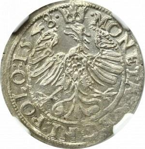 Zygmunt I Stary, Grosz 1548, Kraków - RZADKOŚĆ - NGC MS64 (MAX)