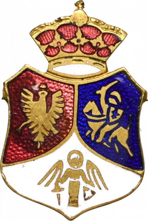 Polska, Aplika Tarcza patriotyczna