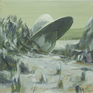 Tomasz Daniec (1973), Roswell (2012)