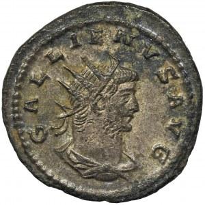 Cesarstwo Rzymskie, Galien, Antoninian