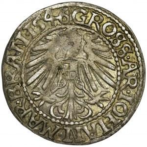 Śląsk, Księstwo Krośnieńskie, Jan Kostrzyński, Grosz Krosno 1546 - RZADKI