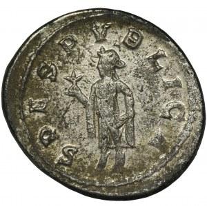 Roman Imperial, Macrianus, Antoninianus - VERY RARE