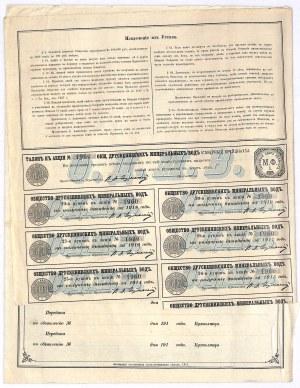 Towarzystwo Akcyjne Druskiennickich Mineralnych Wód - 100 rubli 1900